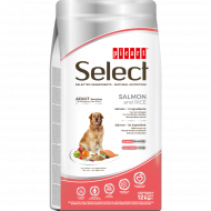 Select Adult Sensitive Salmón y Arroz 12Kg
